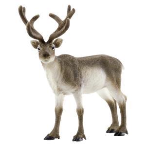 Schleich Wild Life       14837 Reindeer