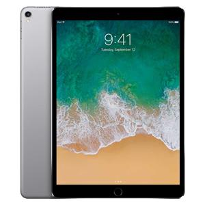 Apple iPad 10.2 (2019) W