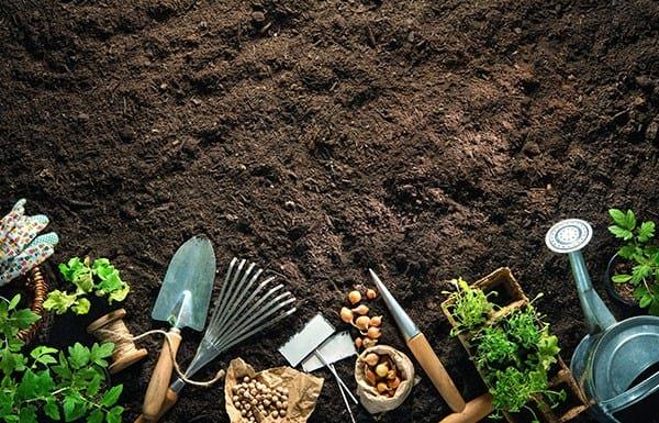Najbolji  vrtni alati uz koje ćete lako poboljšati svoje vrtlarske vještine